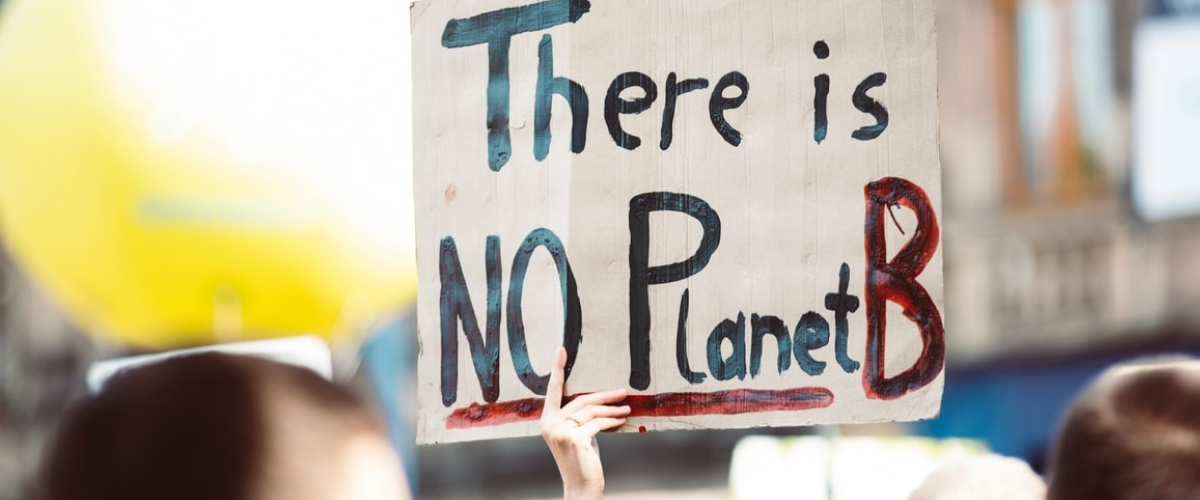 "manifestant avec une pancarte ""there is no planet B"""