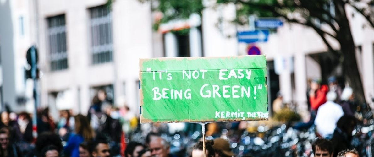 """manifestant avec une pancarte """"it's not easy being green"""""""